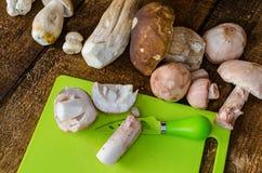Collecting mushrooms Stock Photos
