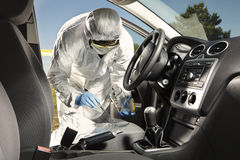 Collecting of odor traces by criminologist from car royalty free stock images