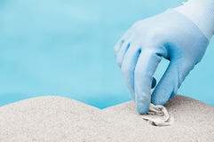 Collecting plastic on a beach Stock Photos