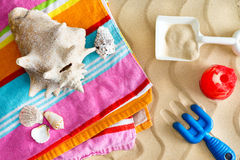 Collecting seashells on a summer vacation Royalty Free Stock Photo