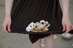 Collecting Seashells Stock Photos