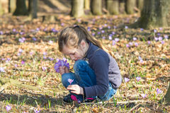 Collecting spring flowers Stock Images