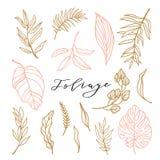 Collection élégante de feuillage pour l'invitation féminine élégante de logo ou de mariage Feuilles mignonnes réglées Illustratio illustration stock