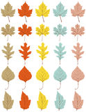 Collection of 25 different autumn leaves Royalty Free Stock Image