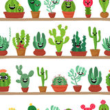 Collection of abstract cactuses in flower pot on shelves. Stock Image