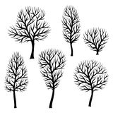 Collection of abstract stylized black trees silhouettes Royalty Free Stock Image