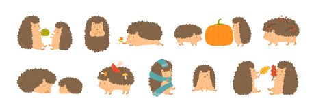 Collection of adorable hedgehogs carrying mushrooms and berries, playing with autumn leaves, sleeping. Set of cute. Forest animals isolated on white background stock illustration