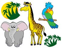 collection africaine de 3 animaux Images stock