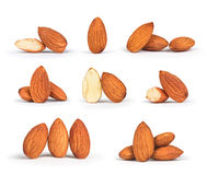 A collection of almonds. On white background Royalty Free Stock Images