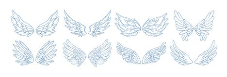 Collection of angel, bird or amour feather wings drawn with contour lines. Set of romantic decorative design elements. Collection of angel, bird or amour feather vector illustration