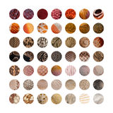Collection of Animal skins Stock Image
