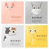 Collection animale de portrait avec des chats illustration libre de droits