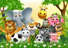Collection animale drôle de dessin animé de faune Photos stock