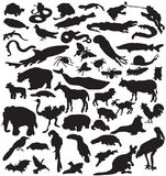 Collection of animals silhouettes. Stock Photos
