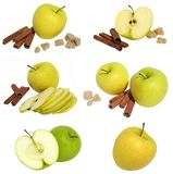Collection of apples Stock Image