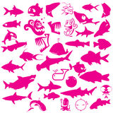 Collection of aquatic vector Stock Photos