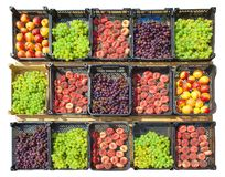 Collection of assorted fruits. On the street market Royalty Free Stock Image