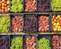 Collection of assorted fruits Royalty Free Stock Photos