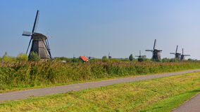 A collection of authentic historic windmills in Kinderdijk, a UNESCO World Heritage site Royalty Free Stock Images