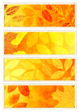 Collection of autumn banners Stock Image