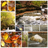 Collection of autumn photographs Royalty Free Stock Photography