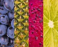 Collection avec différents fruits, baies et légumes Photo stock