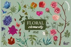 Collection avec les fleurs exotiques Illustration de Vecteur