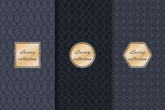 Collection of backgrounds luxury product vector illustration