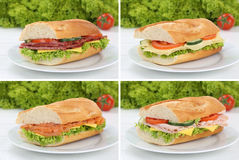 Collection of baguettes on plate with salami ham salmon cheese f Stock Photography