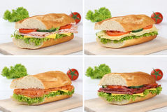 Collection of baguettes with salami ham salmon cheese Royalty Free Stock Image