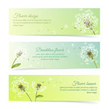 Collection of banners and ribbons with dandelion Royalty Free Stock Image