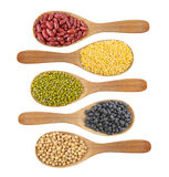 Collection of beans Stock Image