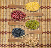 Collection of beans Royalty Free Stock Photos