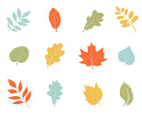 Collection beautiful colorful autumn leaves. royalty free illustration