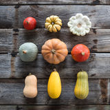 Collection of beautiful colorful seasonal organic pumpkins over old wood Stock Photo