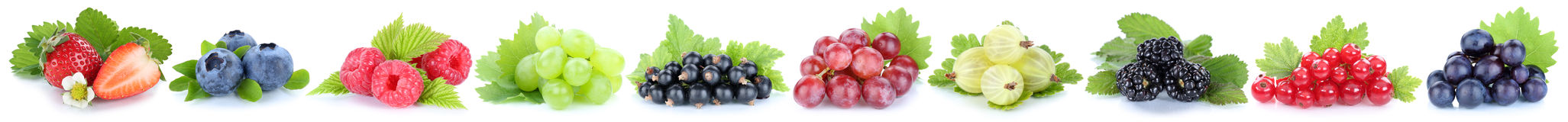Collection of berries fruits grapes strawberries red currant ber Stock Image