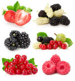 Collection of berries isolated on a white background Royalty Free Stock Images