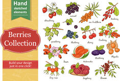 Collection of berries: strawberry, currant, gooseberry, blueberry, cherry, brier, blackberry. Royalty Free Stock Images