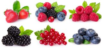 Collection of berries on white background royalty free stock photos