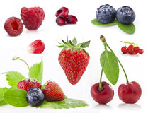 Collection of berry Royalty Free Stock Photos