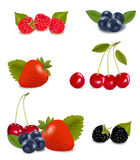 Collection of berry fruits. Collection of berry fruits including: blueberries, raspberries, strawberries, blackberries and cherries with plant leaves. Vector stock illustration