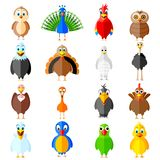 Collection of birds Royalty Free Stock Images