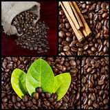 Collection of black coffee. Collection of four images of black coffee royalty free stock image