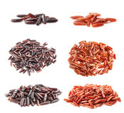 Collection of black and red wild rice Stock Photos
