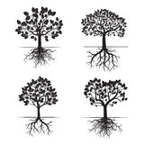 Collection of Black Trees and Roots. Vector Illustration. Royalty Free Stock Images