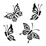 Collection black and white butterflies Stock Photo