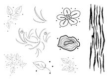 Collection of Black and White Doodle Flaral Pattern Stock Photos