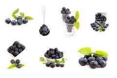 Collection of blue berry Stock Photography
