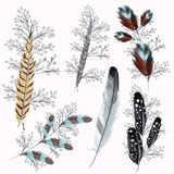 Collection of boho feathers. For design royalty free illustration