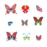 Collection of botanical colorful butterflies, for design, decora. Tion on white background, vector Royalty Free Stock Photography